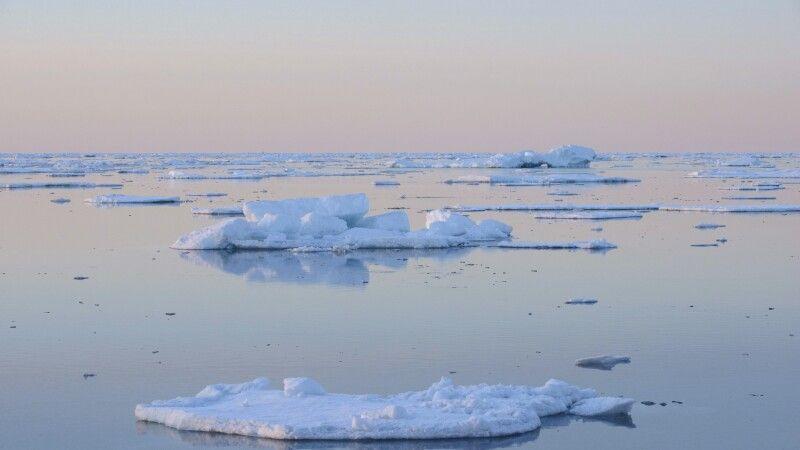 Kleinere Eisberge im Abendlicht – Scoresby-Sund © Diamir
