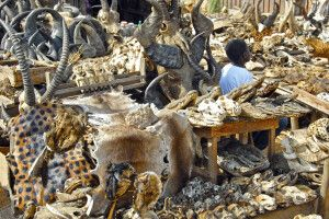 Fetish Markt in Lome