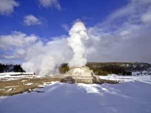 Castle Geysir, Yellowstone NP