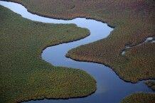 Fly In im Okavango-Delta