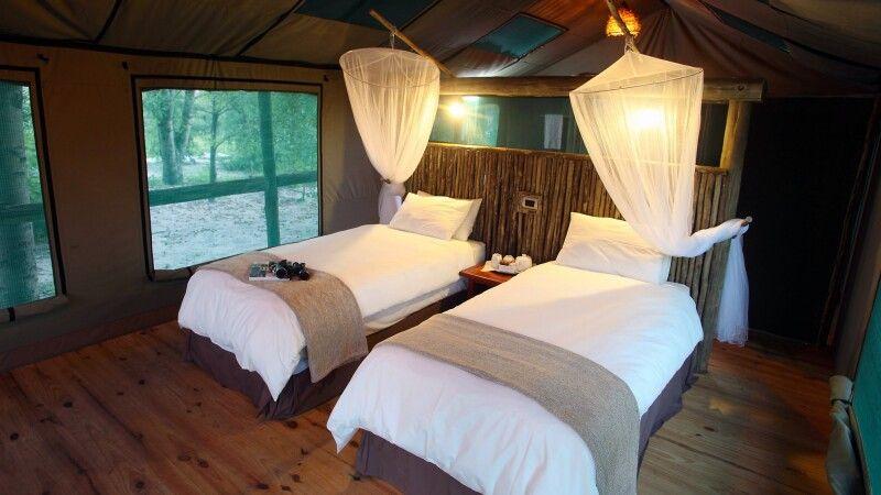 Nata Lodge: Safarizelt © Diamir