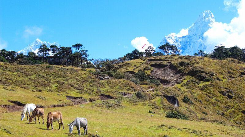 Landschaft oberhalb von Namche Bazar © Diamir