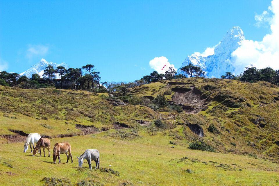 Landschaft oberhalb von Namche Bazar