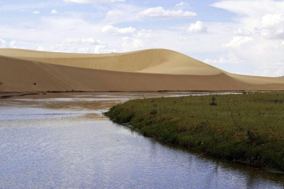 Ikh Mongol Els