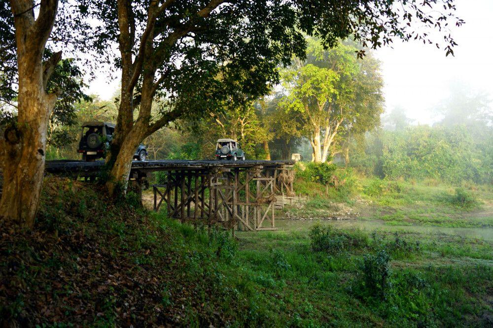 herrliche Holzbrücke im Kaziranga-Nationalpark