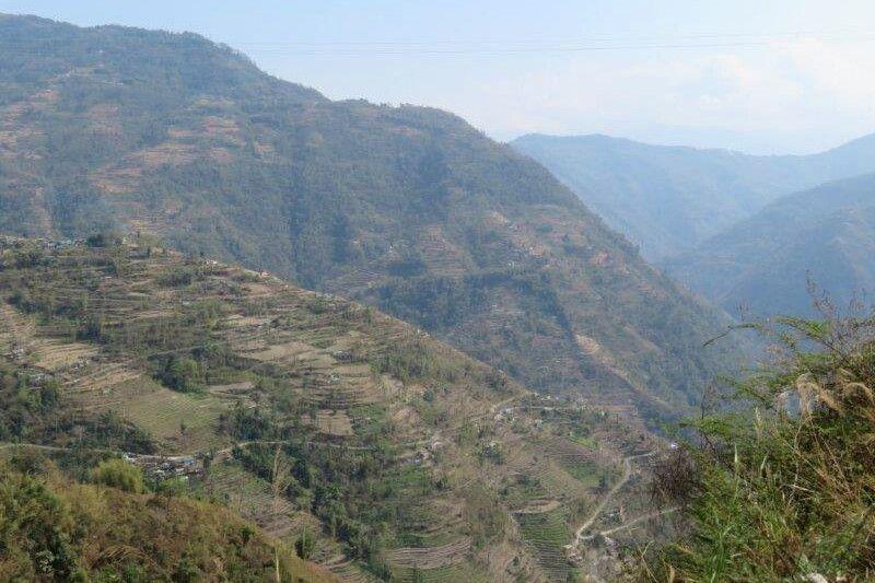 Reisterrassen auf den Hügeln Nepals