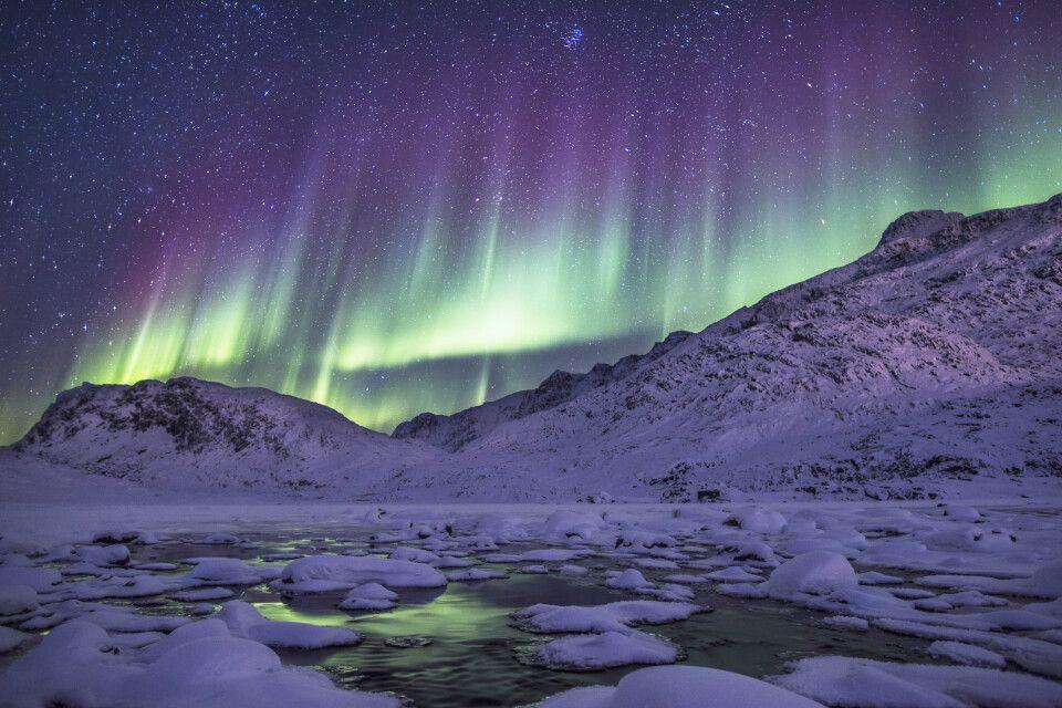 Nordlichter überm Fjord