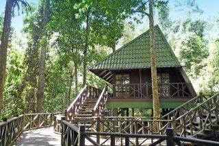 Tabin Wildlife Reserve