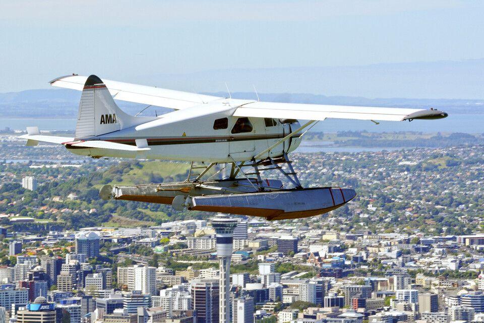 Über den Dächern von Auckland