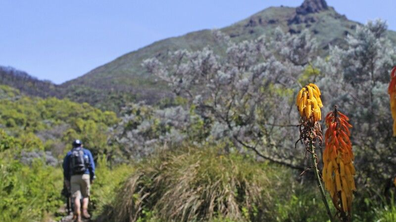 Trekking am Mount Meru © Diamir