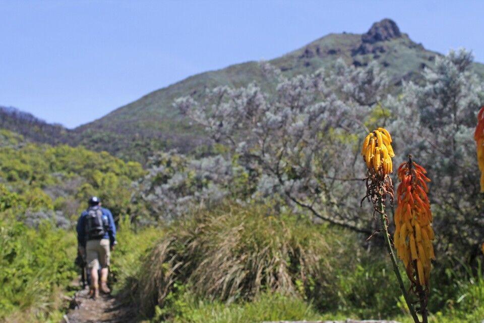 Trekking am Mount Meru