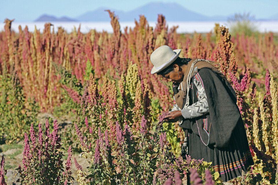 Bolivianische Indigena