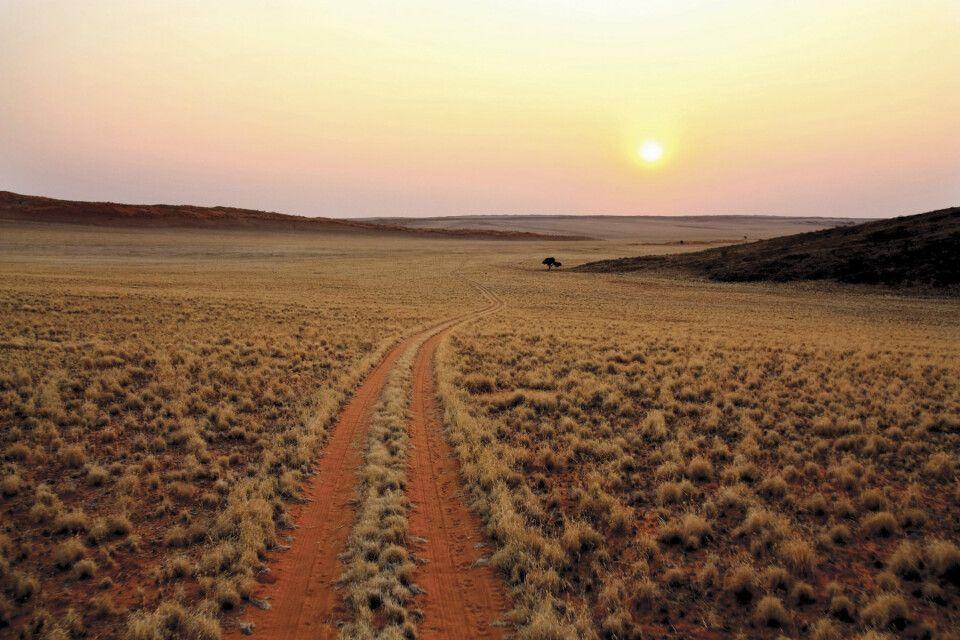 sich in der Weite Namibias verlieren