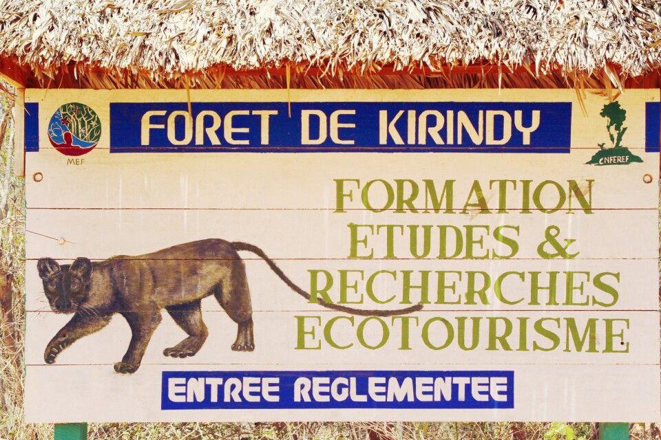 Kirindy- Nationalpark