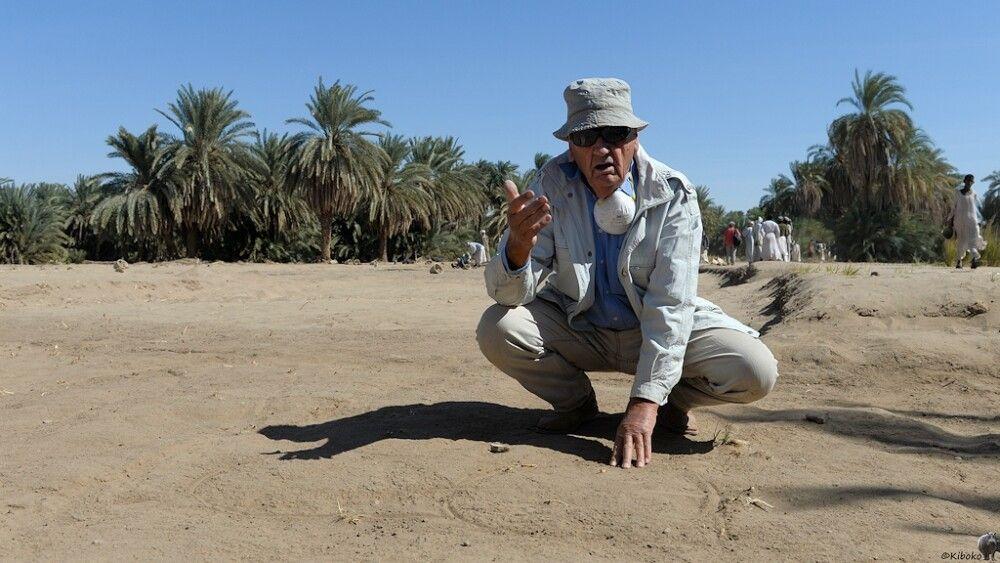 17. Professor Bonnet zeigt den Stand der Ausgrabungen von Kerma