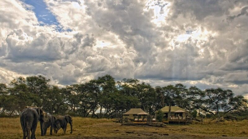 Somalisa Camp, Hwange-Nationalpark © Diamir