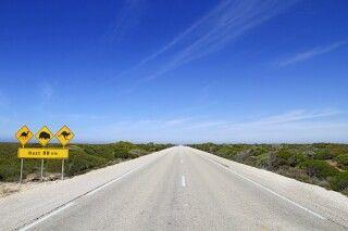 Roadsign Outback