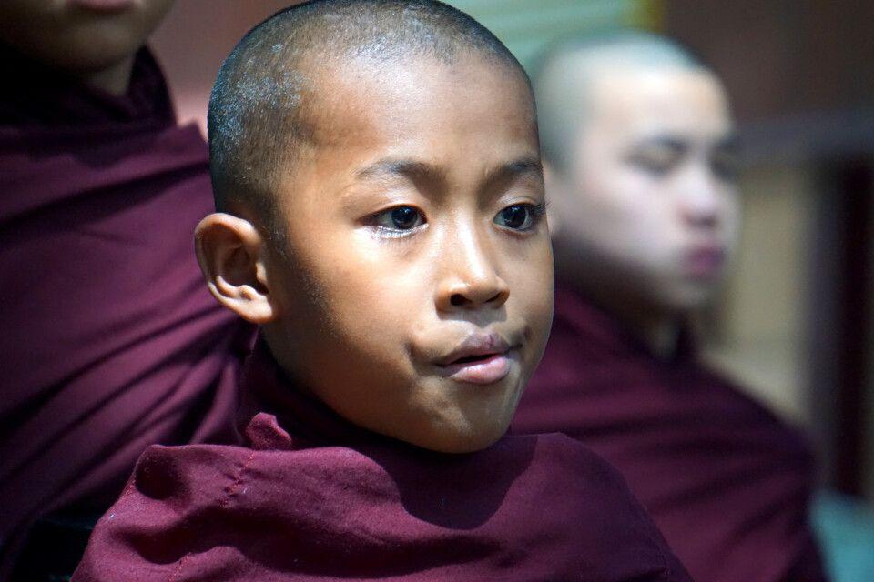 Junger Mönch in Amarapura