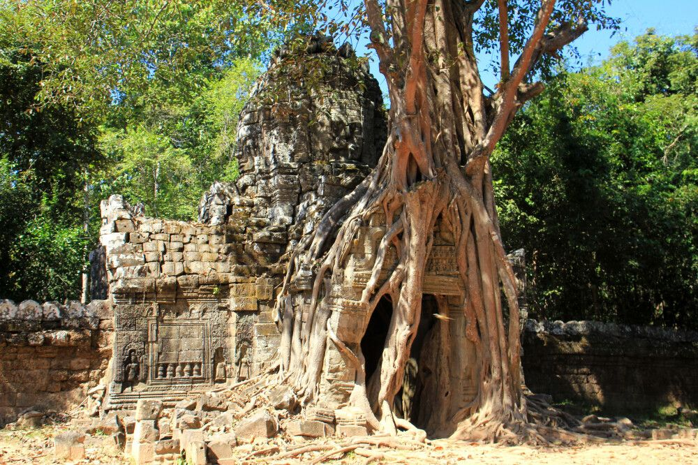 Stilleben in Angkor