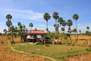 Typische ländliche Szene in Kambodscha