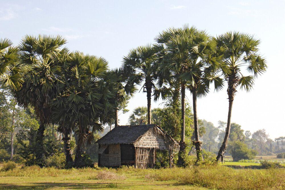 Landarbeiterhütte auf dem Land in Kambodscha