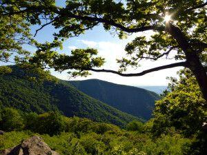 Aussicht im Shenandoah National Park, Virginia