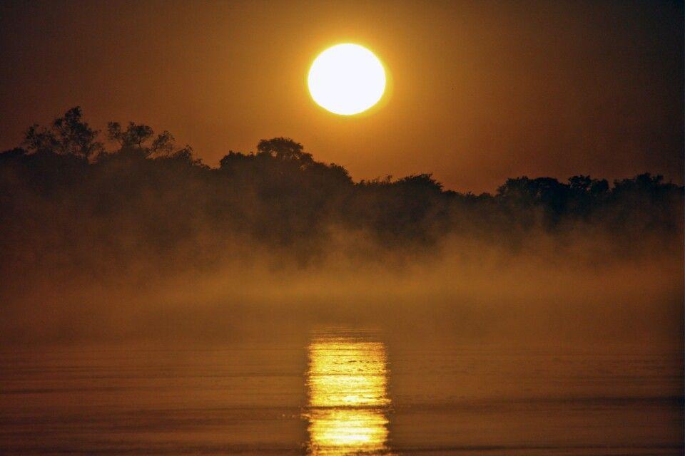 Sonnenaufgang über dem Sambesi