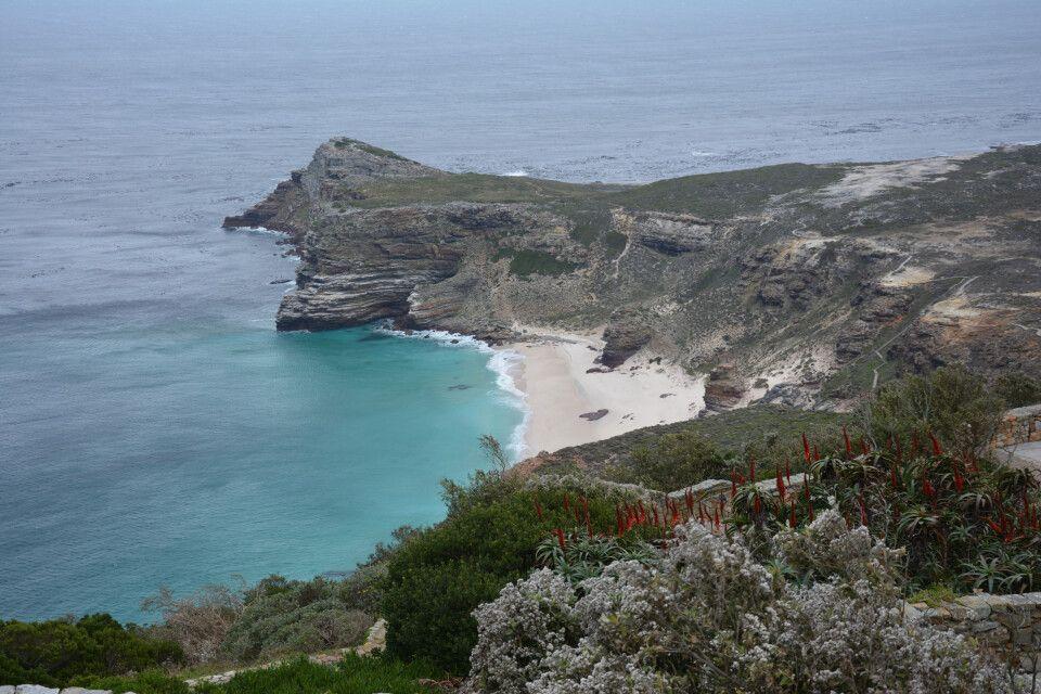 Am ersten Tag der Tour von Kapstadt zu den Viktoriafällen geht es zum Kap der Guten Hoffnung. Ein Spaziergang führt uns durch den Cape Point National Park, der ebenso für seine einzigartige Pflanzenvielfalt bekannt ist.