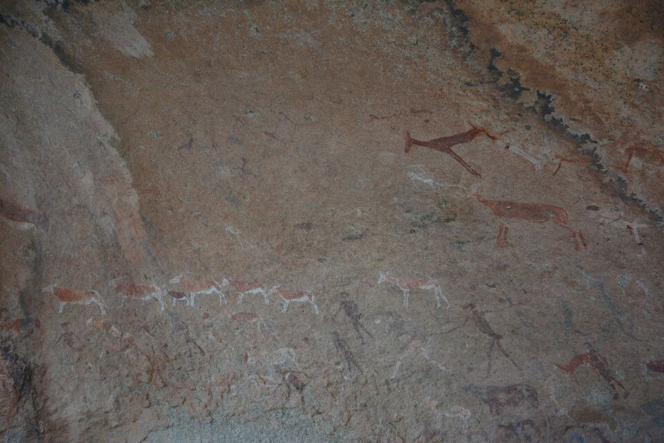 Das Alter der Höhlenmalereien der White Lady wird auf ca. 2000-4000 Jahre geschätzt. Zu sehen sind die Abbilder verschiedener Tiere. Unterschiedliche Interpretationen besagen, dass die Hauptfigur entweder weiblichen oder männlichen Geschlechts sei.