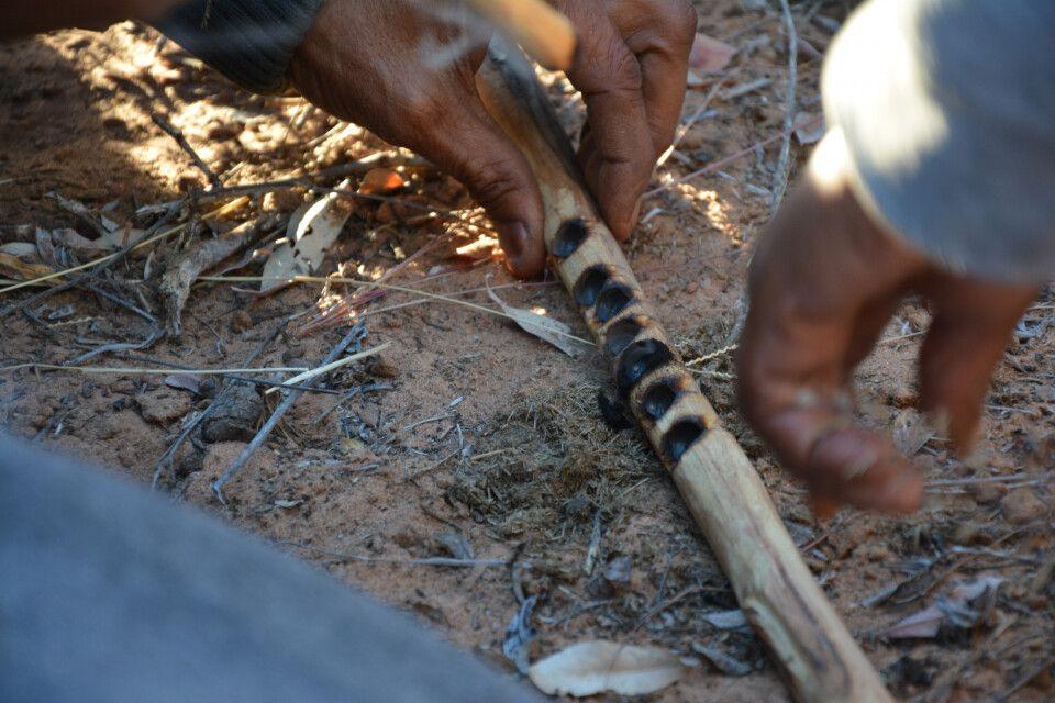 Nachdem Windhoek ein kurzer Besuch abgestattet wird, geht es nach Botswana – mitten in die Kalahari, und es geht mit San-Buschleuten auf die Pirsch. Hier werden allerhand Tiere aufgespürt und es wird viel gelernt, z.B. wie nützlich Zebra-Dung zum Feuermac