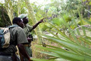 Wissenschaftler und Wildhüter im Gorongosa-Nationalpark