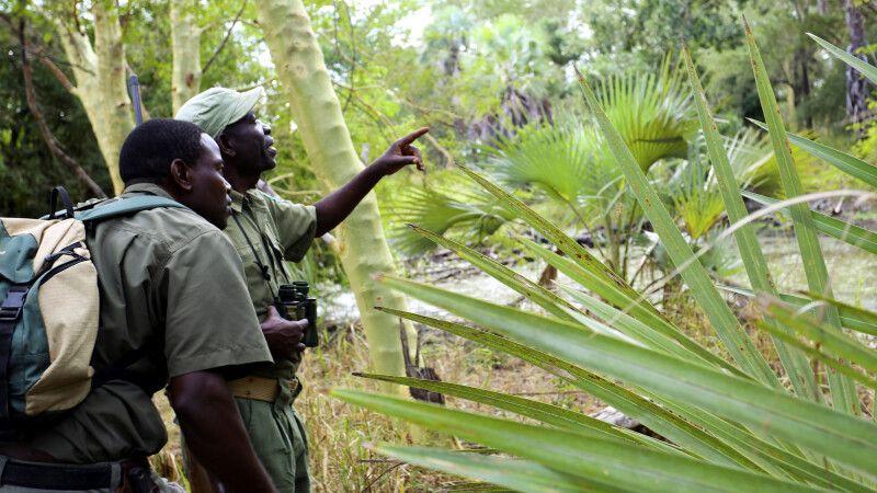 Wissenschaftler und Wildhüter im Gorongosa-Nationalpark © Diamir