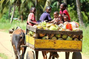 Familie auf dem Weg zum Markt