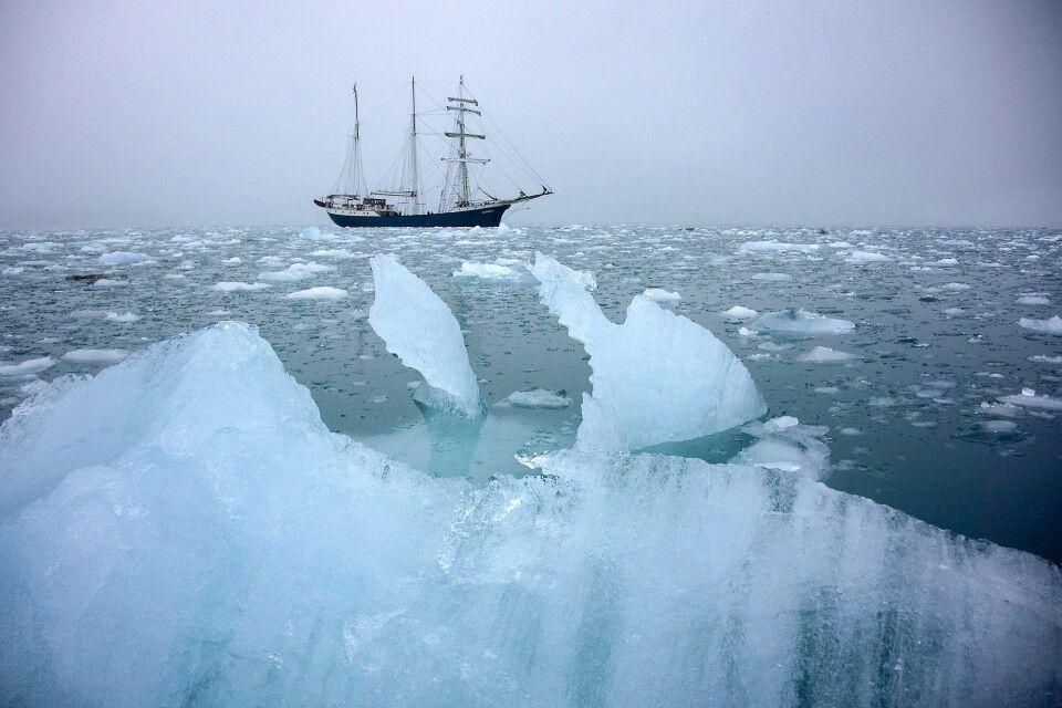 Auf Schlauchbootfahrt am Lilliehöökbreen – im Nebel ein mystisches Erlebnis