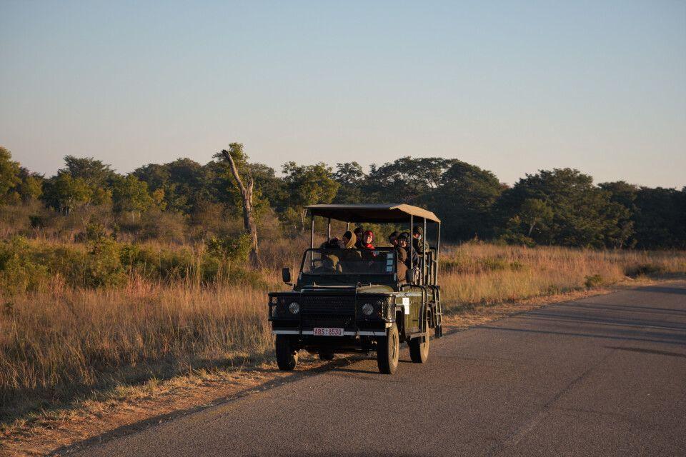 Im offenen Geländefahrzeug durch den Hwange-Nationalpark