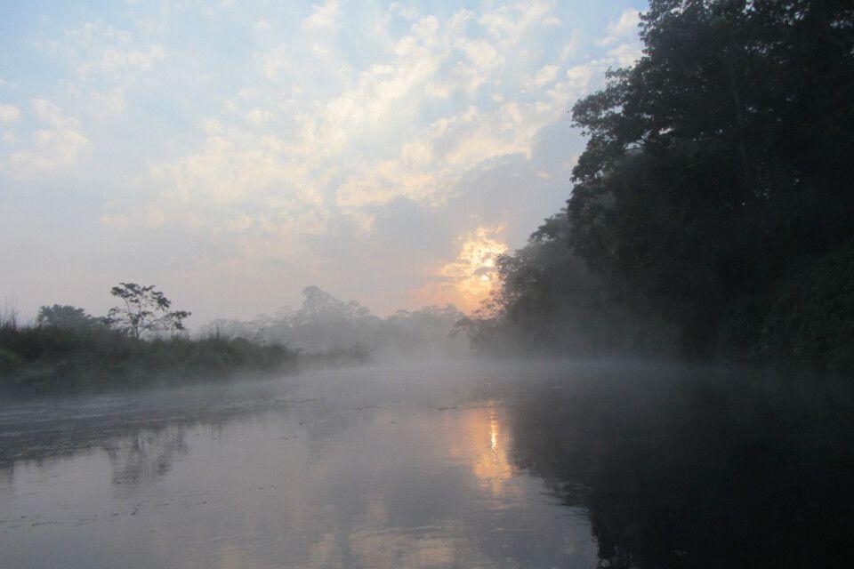 Mystische Stimmung im Chitwan-Nationalpark