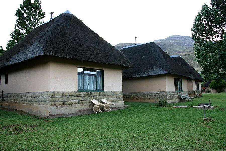 Drakensberge, Lotheni Lodge