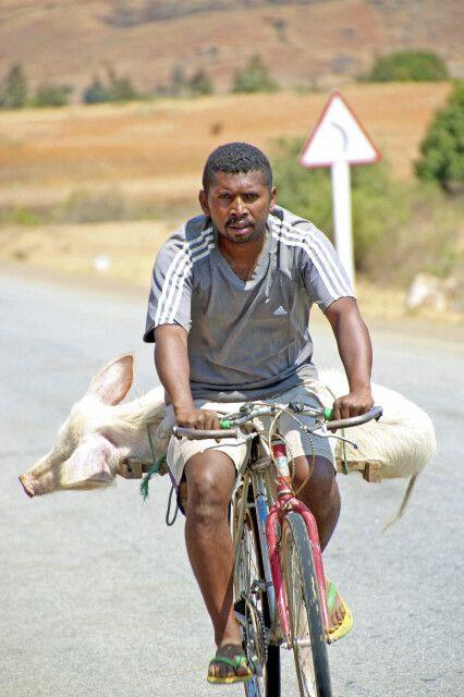 Transportmittel auf madagassisch