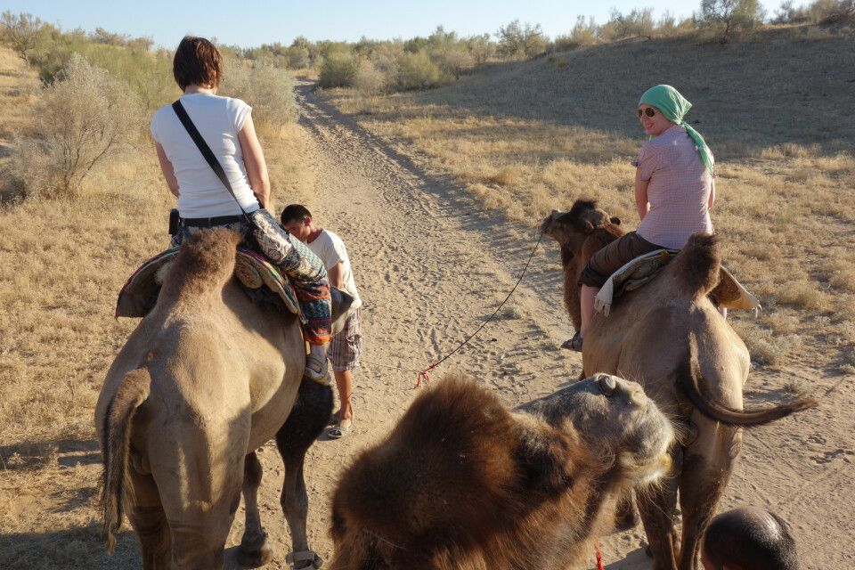 Ausritt mit dem Kamel