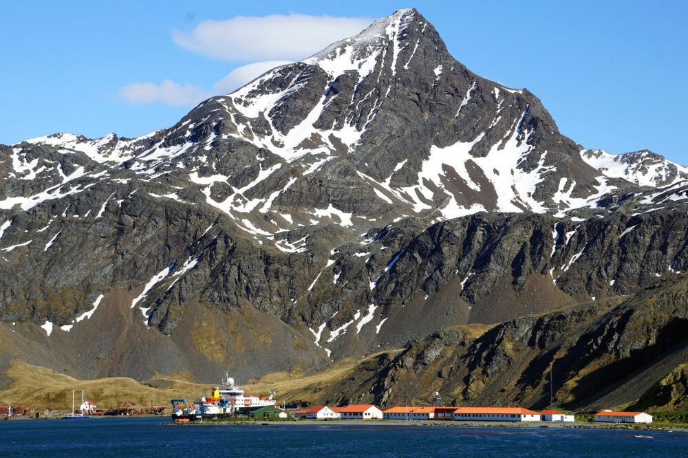 Grytviken und King Edward Point
