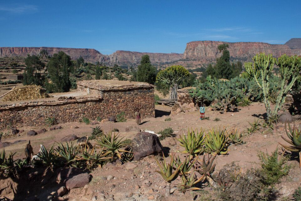 Landschaft in der Tigray Region