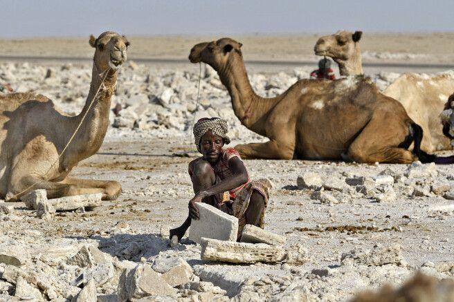 Salzstemmer in der Danakil