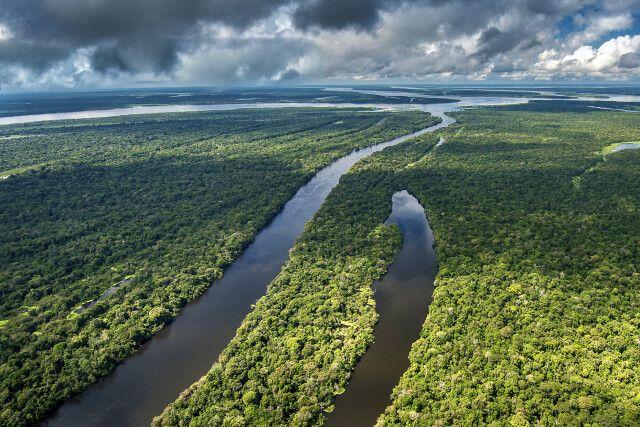 Weitblick über das Mamiraua-Reservat im Amazonasregenwald