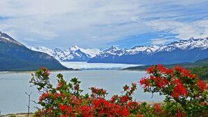 Blick auf den Perito-Moreno-Gletscher aus der Ferne