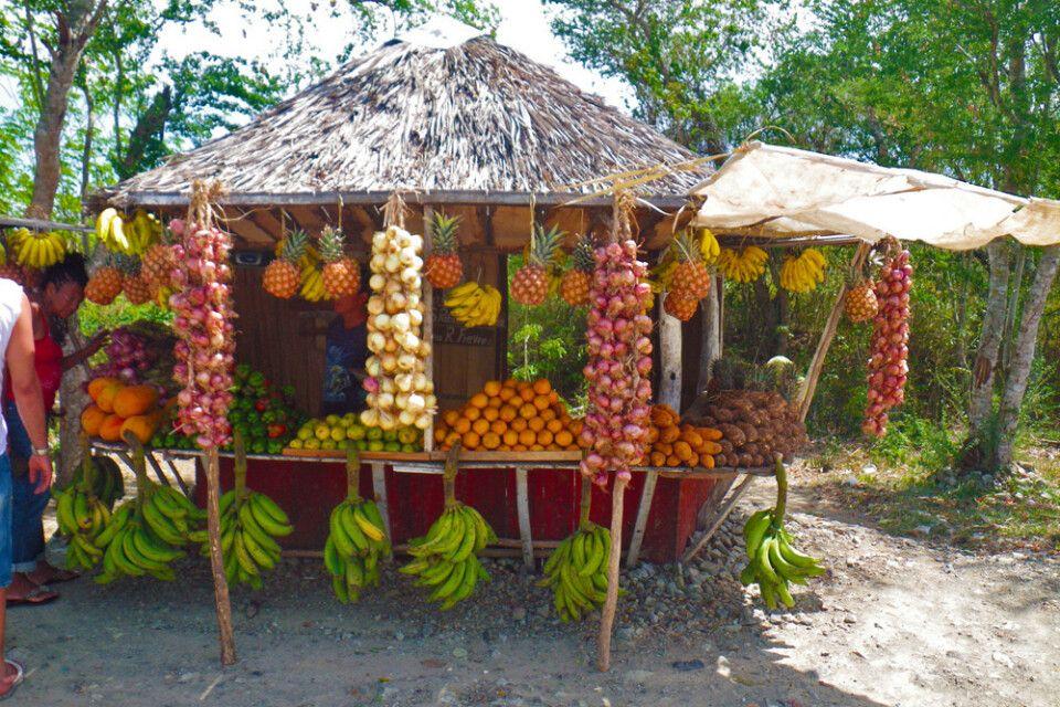 Kubanische Früchte