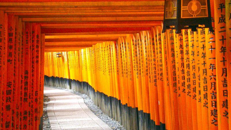 Tausende Torii am Fushimi-Inari-Schrein © Diamir