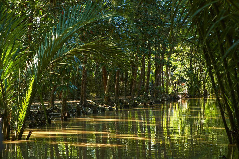 Kleiner Kanal im Irrawaddydelta