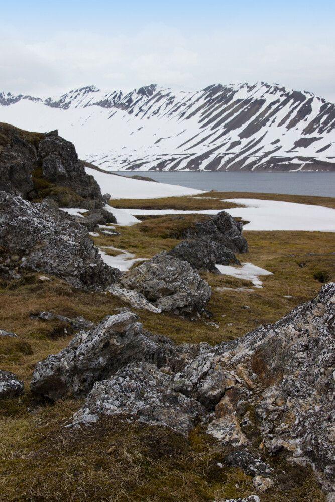 Unterwegs in der Tundra Spitzbergens