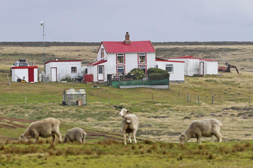 Farmhaus in Volunteer Point – Unterkunft