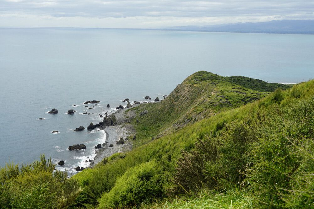Ein Blick über die Kapiti Coast von einem Aussichtspunkt auf Kapiti Island, einem Naturreservat und Schutzgebiet für zahlreiche endemische Vogelarten.
